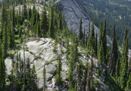 The Rugged Selkirk Crest